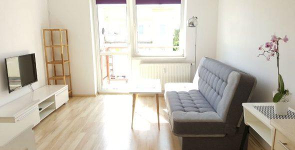 Salon mieszkania na wynajem Gorzow